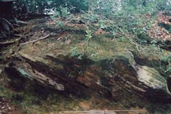 oldbury hill_rocks-2